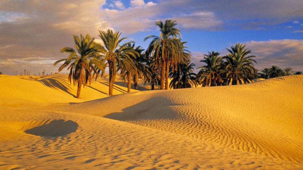 Pustinja Sahara, Afrika